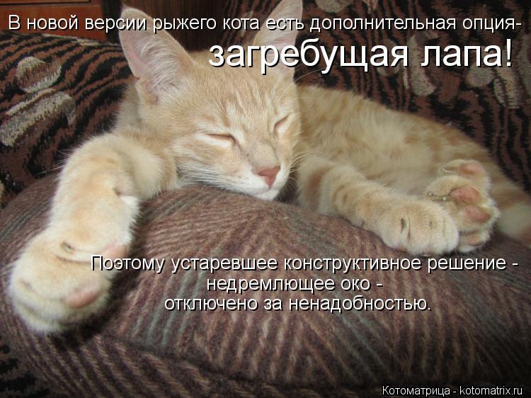 Котоматрица: В новой версии рыжего кота есть дополнительная опция- загребущая лапа! Поэтому устаревшее конструктивное решение - недремлющее око - отклю