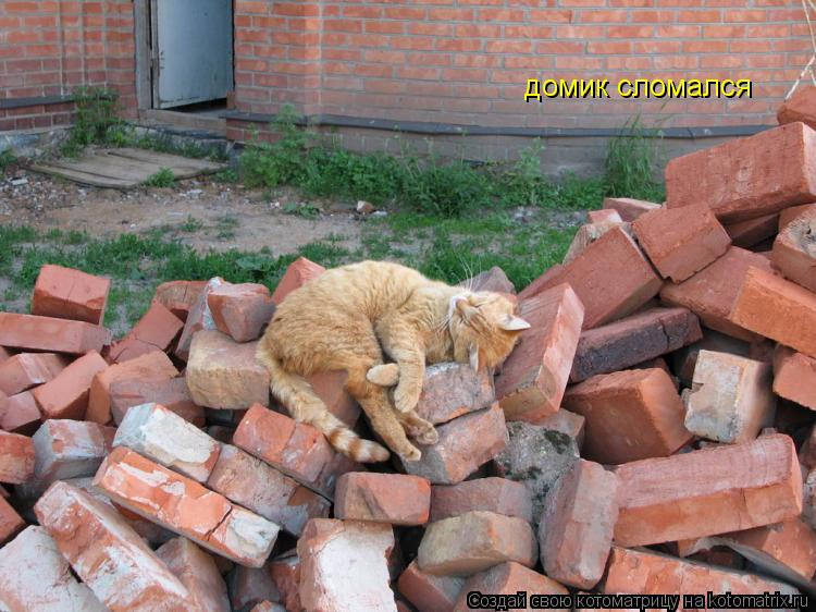Котоматрица: домик сломался