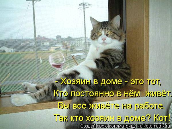 Котоматрица: - Хозяин в доме - это тот,  Кто постоянно в нём  живёт. Вы все живёте на работе. Так кто хозяин в доме? Кот!