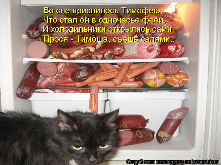 Котоматрица: Во сне приснилось Тимофею,  Что стал он в одночасье феей. И холодильники открылись сами, Прося - Тимоша, съешь салями...