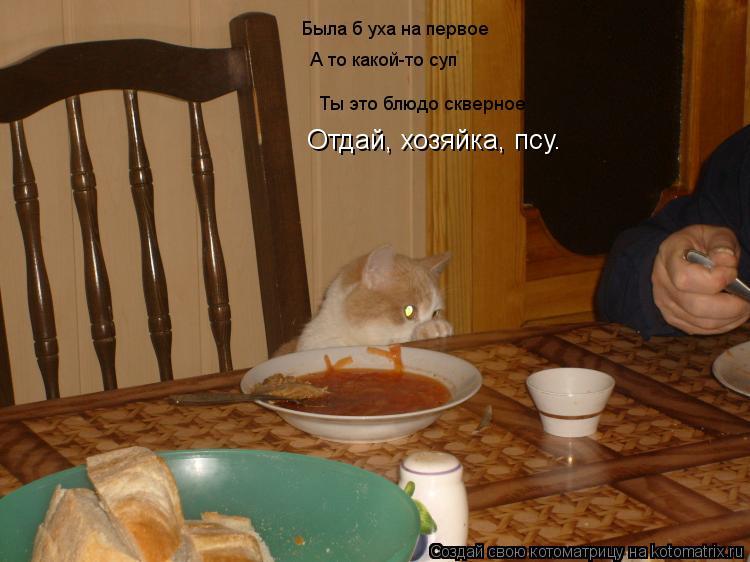 Котоматрица: Была б уха на первое Ты это блюдо скверное Ты это блюдо скверное А то какой-то суп Отдай, хозяйка, псу.