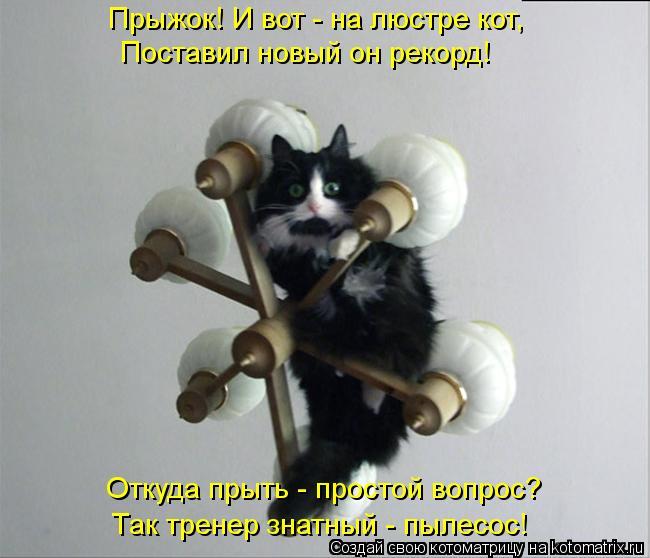 http://kotomatrix.ru/images/lolz/2012/08/22/kotomatritsa_rt.jpg