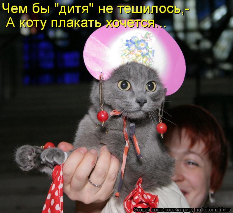 """Котоматрица: А коту плакать хочется... Чем бы """"дитя"""" не тешилось,-"""