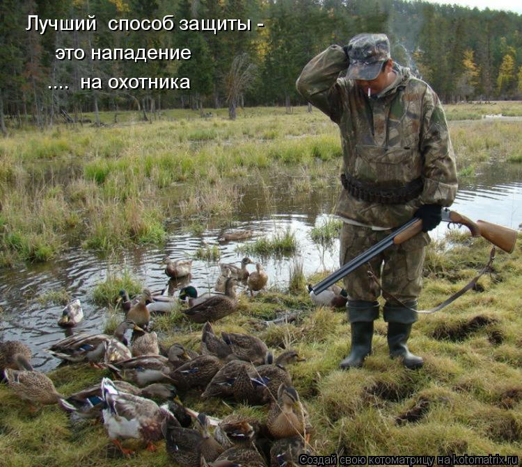 Котоматрица: Лучший  способ защиты - это нападение ....  на охотника