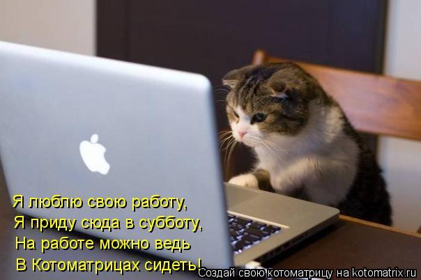 Котоматрица: Я люблю свою работу, Я приду сюда в субботу, На работе можно ведь В Котоматрицах сидеть!