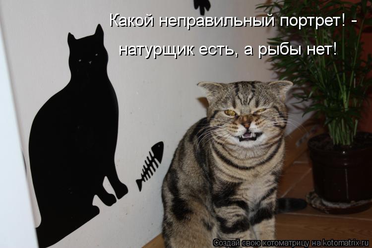 Котоматрица: Какой неправильный портрет! -  натурщик есть, а рыбы нет!