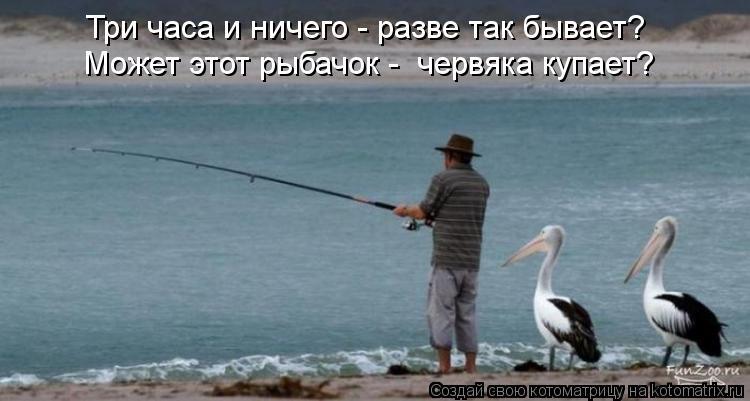 Котоматрица: Три часа и ничего - разве так бывает? Может этот рыбачок -  червяка купает?