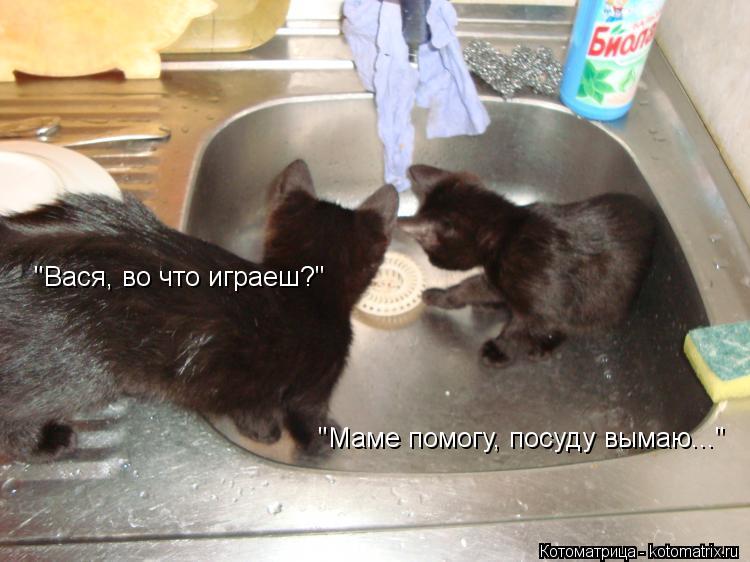 """Котоматрица: """"Вася, во что играеш?"""" """"Маме помогу, посуду вымаю..."""""""