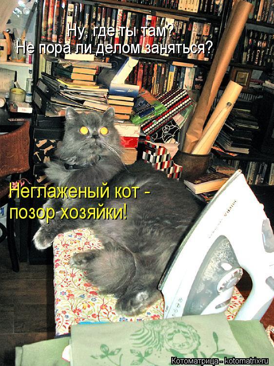 Унижение госпожой онлайн 4 фотография