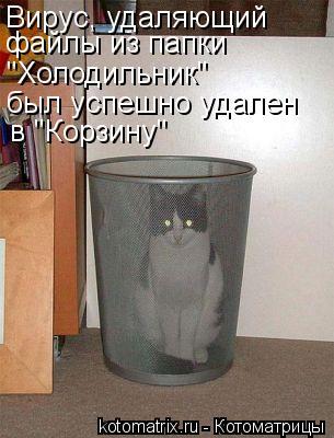 """Котоматрица: Вирус, удаляющий файлы из папки был успешно удален """"Холодильник"""" в """"Корзину"""""""