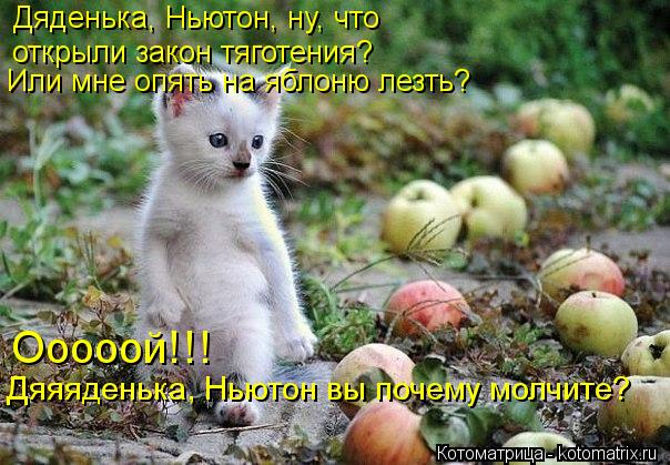 Котоматрица: Дяденька, Ньютон, ну, что  открыли закон тяготения? Или мне опять на яблоню лезть? Ооооой!!! Дяяяденька, Ньютон вы почему молчите?