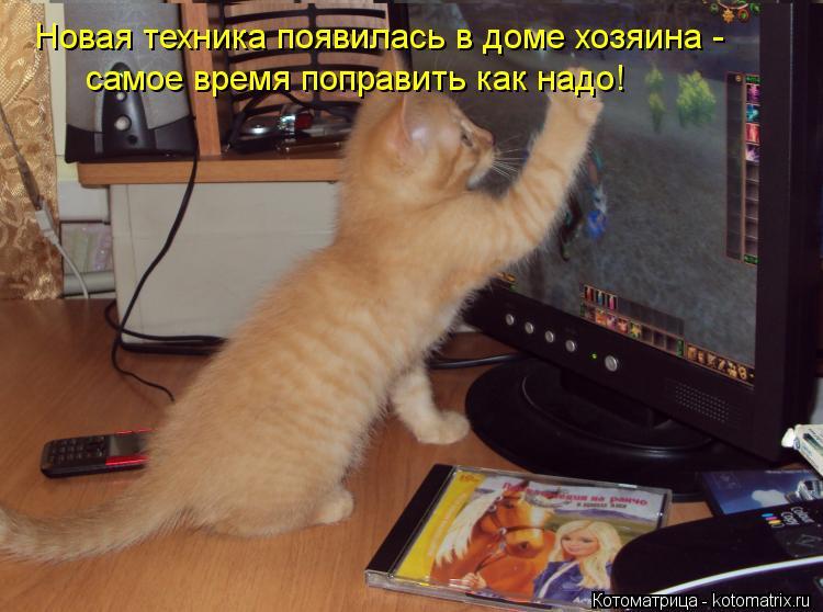 Котоматрица: Новая техника появилась в доме хозяина -  самое время поправить как надо!