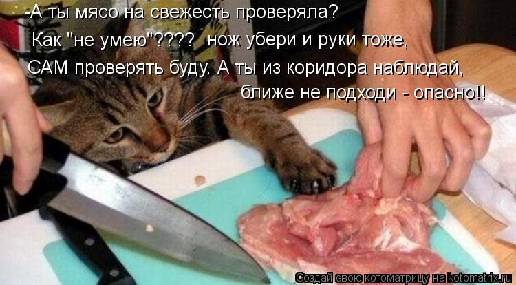 """Котоматрица: -А ты мясо на свежесть проверяла? Как """"не умею""""???? нож убери и руки тоже, ближе не подходи - опасно!! САМ проверять буду. А ты из коридора наблюда"""