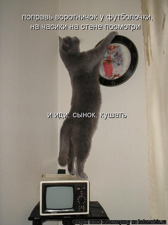 Котоматрица: поправь воротничок у футболочки,  на часики на стене посмотри и иди, сынок, кушать