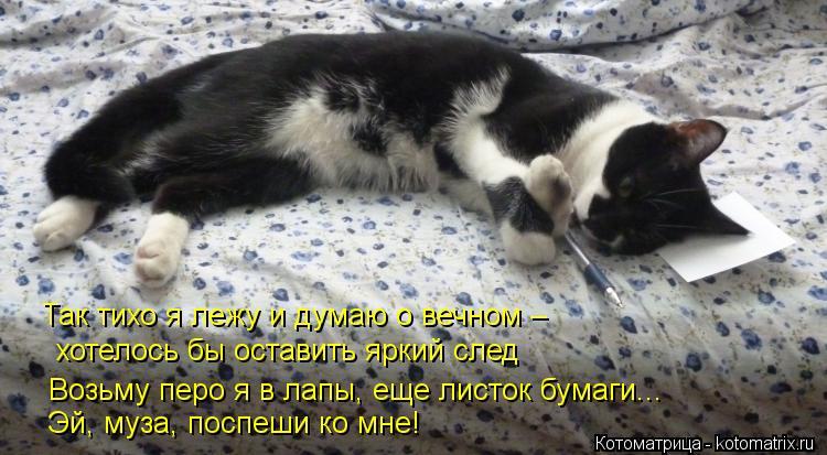 Котоматрица: Так тихо я лежу и думаю о вечном –  хотелось бы оставить яркий след Возьму перо я в лапы, еще листок бумаги...   Эй, муза, поспеши ко мне!