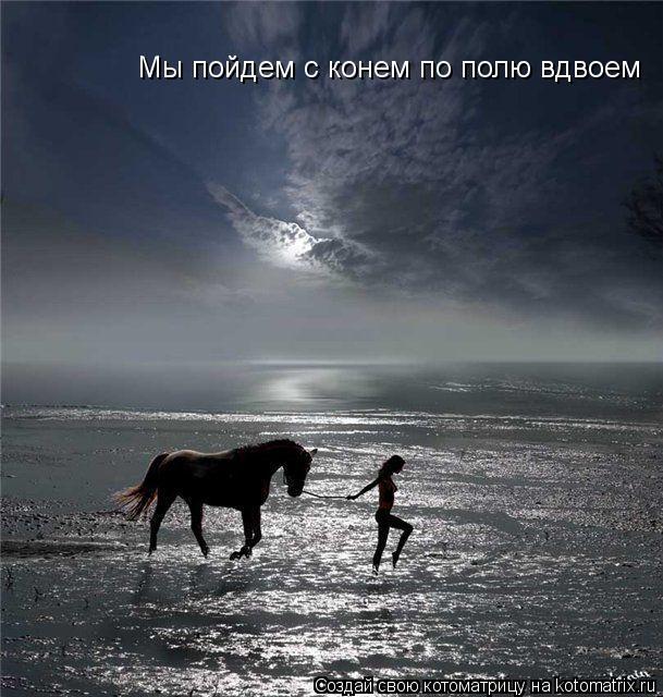 Котоматрица: Мы пойдем с конем по полю вдвоем