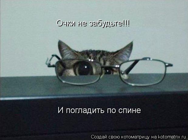 Котоматрица: Очки не забудьте!!! И погладить по спине