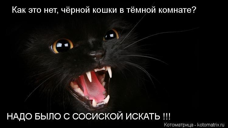 Котоматрица: Как это нет, чёрной кошки в тёмной комнате? НАДО БЫЛО С СОСИСКОЙ ИСКАТЬ !!!