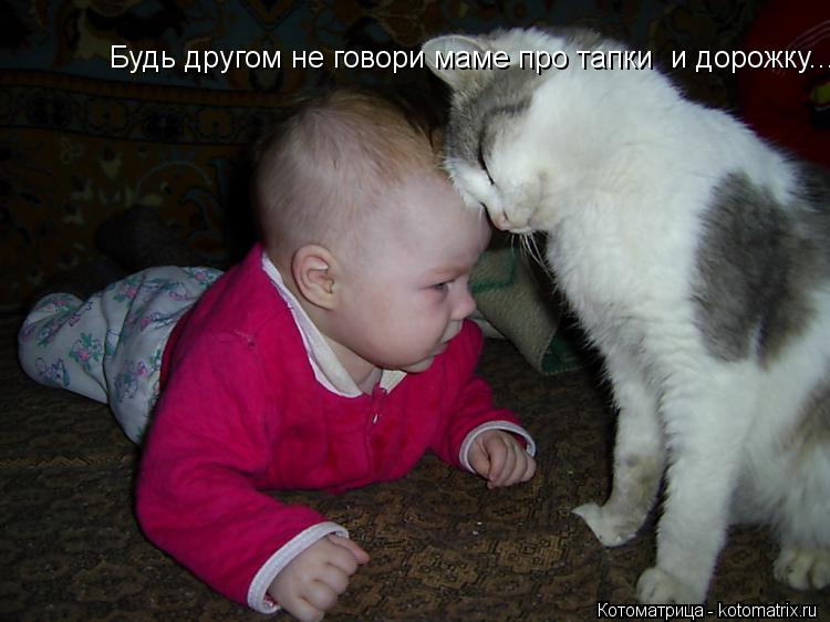 Котоматрица: Будь другом не говори маме про тапки  и дорожку...