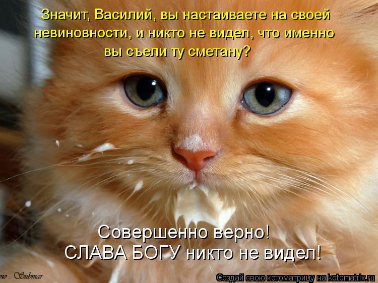 Котоматрица: Значит, Василий, вы настаиваете на своей  невиновности, и никто не видел, что именно  вы съели ту сметану?  СЛАВА БОГУ никто не видел! Совершен