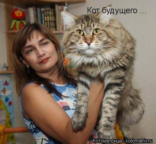 Котоматрица: Кот будущего ...