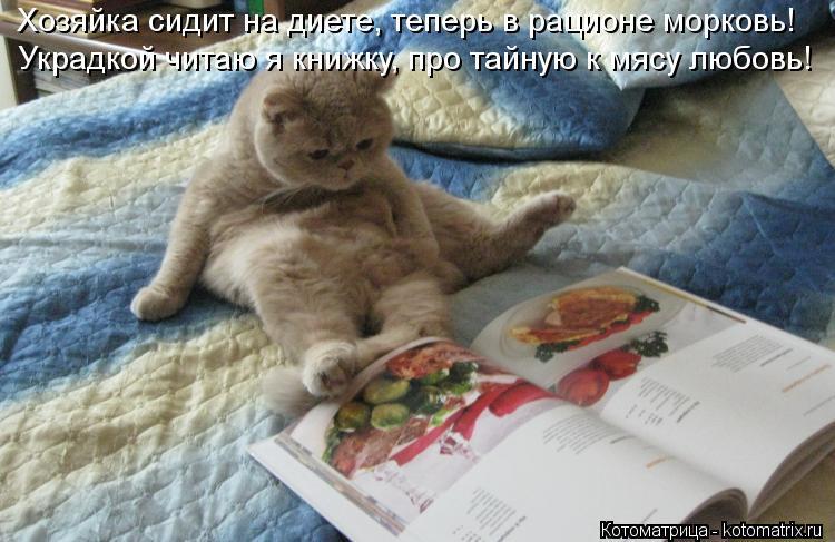 Котоматрица: Хозяйка сидит на диете, теперь в рационе морковь! Украдкой читаю я книжку, про тайную к мясу любовь!