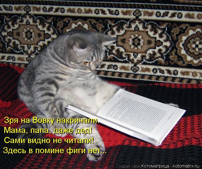 Котоматрица: Зря на Вовку накричали. Мама, папа, даже дед! Сами видно не читали! Здесь в помине фиги нет...