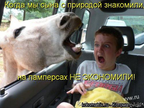 Котоматрица: Когда мы сына с природой знакомили,  на памперсах НЕ ЭКОНОМИЛИ!