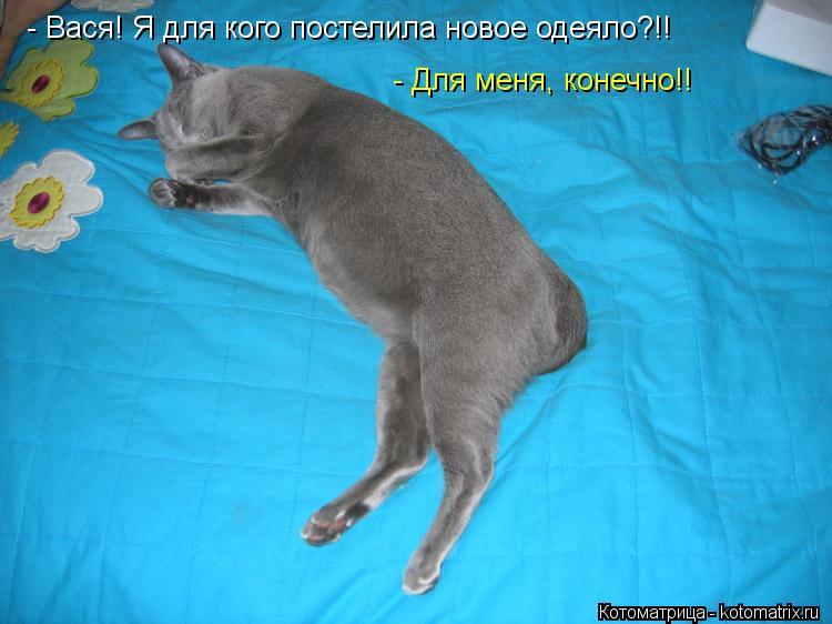 Котоматрица: - Вася! Я для кого постелила новое одеяло?!! - Для меня, конечно!!