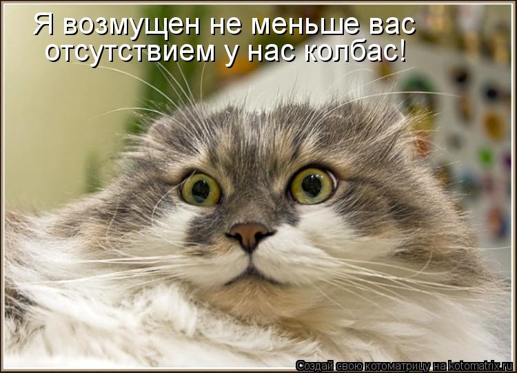 Котоматрица: Я возмущен не меньше вас отсутствием у нас колбас!