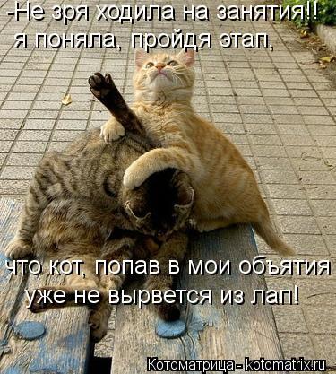 Котоматрица: -Не зря ходила на занятия!! уже не вырвется из лап! я поняла, пройдя этап, что кот, попав в мои объятия
