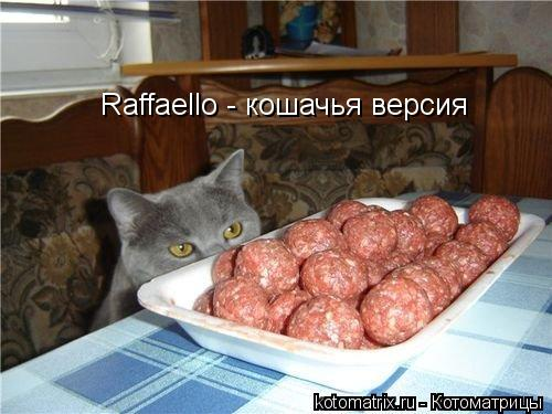Котоматрица: Raffaello - кошачья версия