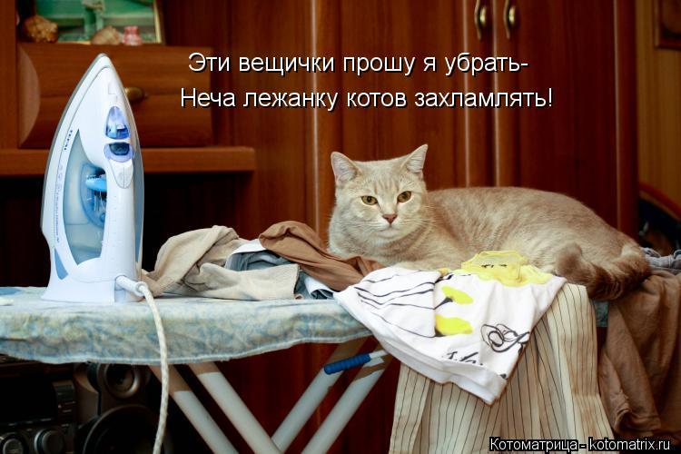 Котоматрица: Эти вещички прошу я убрать- Неча лежанку котов захламлять!