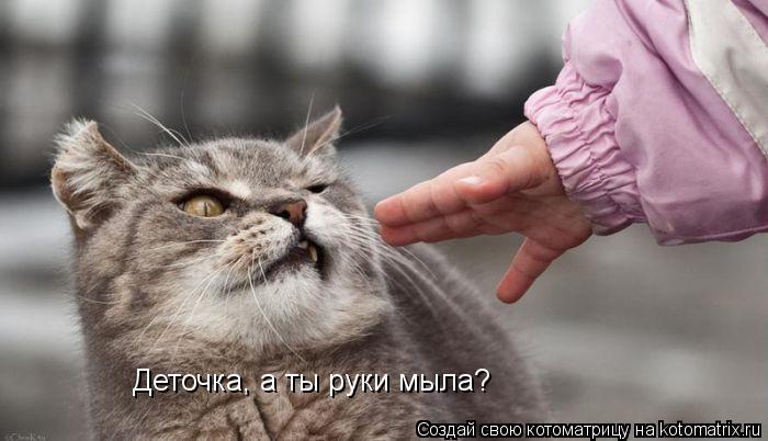 Котоматрица: Деточка, а ты руки мыла?