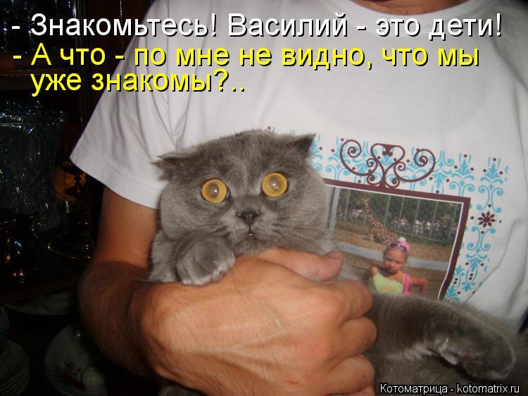 Котоматрица: - Знакомьтесь! Василий - это дети! - А что - по мне не видно, что мы уже знакомы?..
