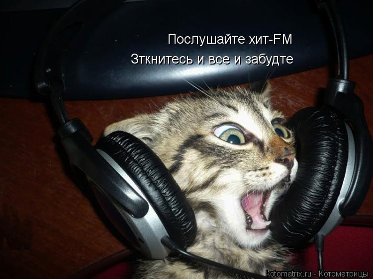 Котоматрица: Послушайте хит-FM Зткнитесь и все и забудте