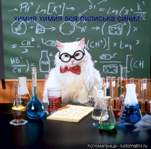 Котоматрица: химия химия вся пиписька синия
