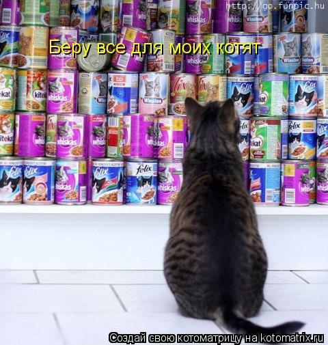 Котоматрица: Беру все для моих котят