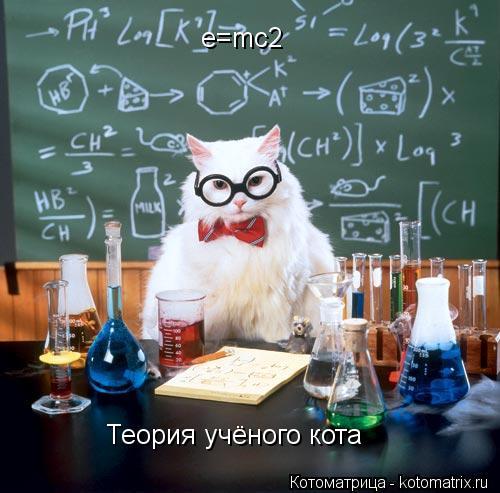 Котоматрица: e=mc2 Теория учёного кота