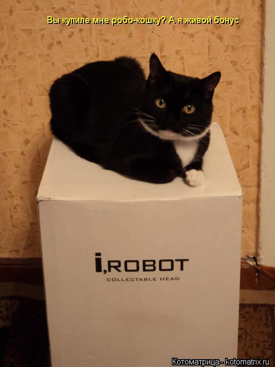 Котоматрица: Вы купиле мне робо-кошку? А я живой бонус