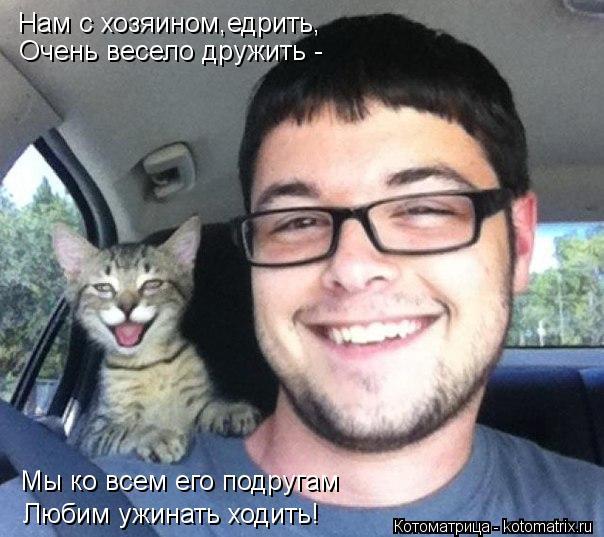 Котоматрица: Нам с хозяином,едрить, Очень весело дружить - Мы ко всем его подругам Любим ужинать ходить!