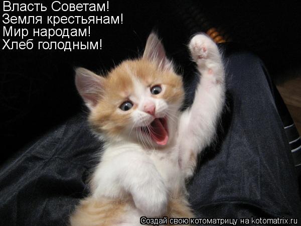 Котоматрица: Власть Советам! Земля крестьянам! Мир народам! Хлеб голодным!