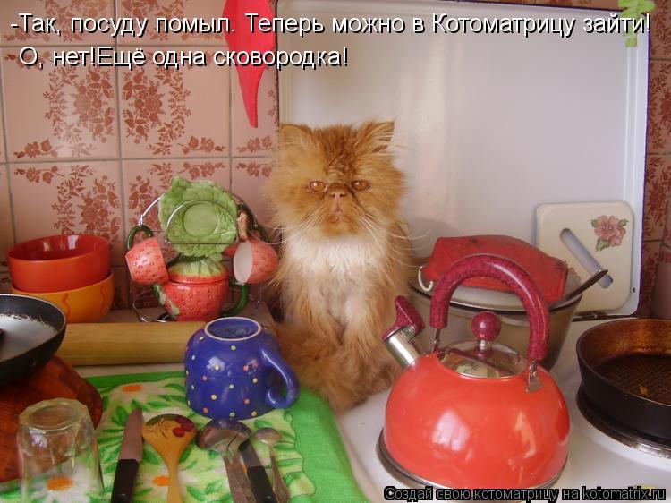 Котоматрица: -Так, посуду помыл. Теперь можно в Котоматрицу зайти! О, нет!Ещё одна сковородка!