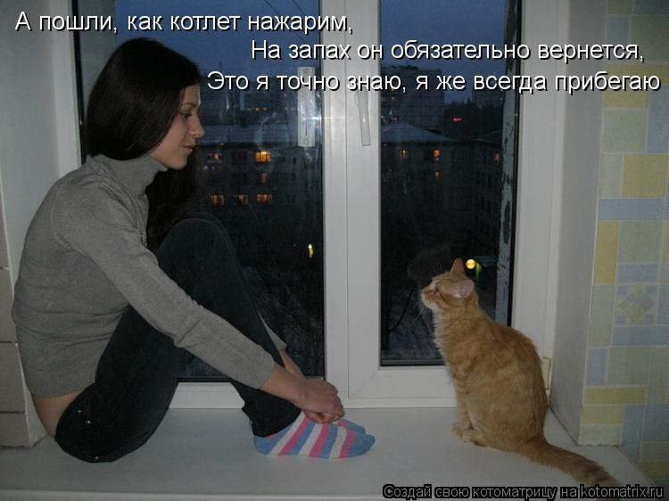 Котоматрица: А пошли, как котлет нажарим, На запах он обязательно вернется, Это я точно знаю, я же всегда прибегаю