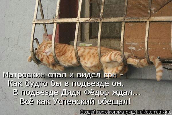 Котоматрица: Матроскин спал и видел сон - Как будто бы в подъезде он. В подъезде Дядя Фёдор ждал... Всё как Успенский обещал!