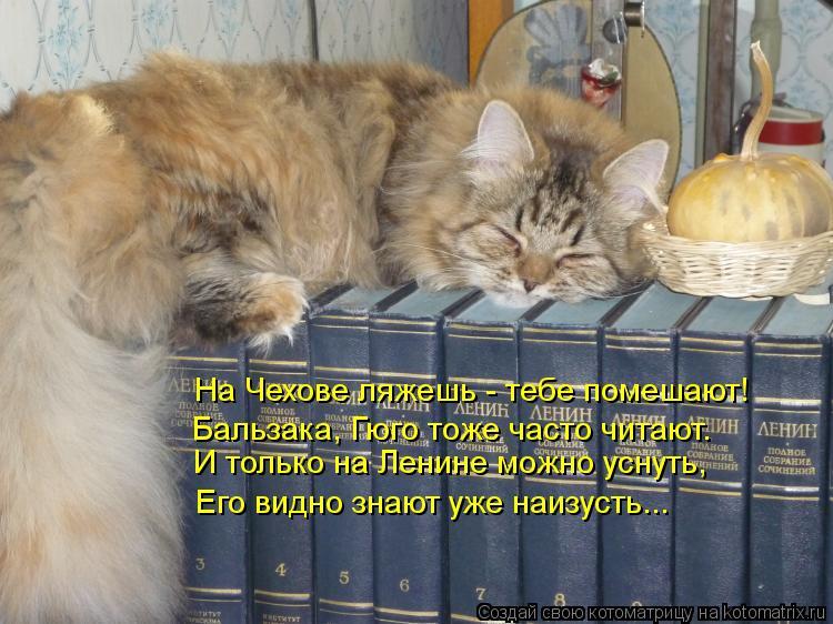 Котоматрица: И только на Ленине можно уснуть, Его видно знают уже наизусть... На Чехове ляжешь - тебе помешают! Бальзака, Гюго тоже часто читают.