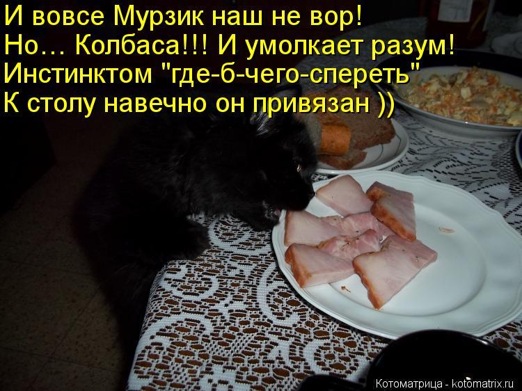 """Котоматрица: И вовсе Мурзик наш не вор!  Но… Колбаса!!! И умолкает разум! Инстинктом """"где-б-чего-спереть""""  К столу навечно он привязан ))"""