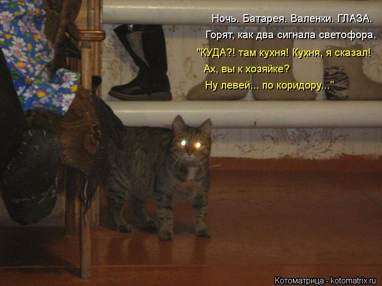"""Котоматрица: Ночь. Батарея. Валенки. ГЛАЗА. Горят, как два сигнала светофора. """"КУДА?! там кухня! Кухня, я сказал! Ах, вы к хозяйке?  Ну левей... по коридору..."""""""