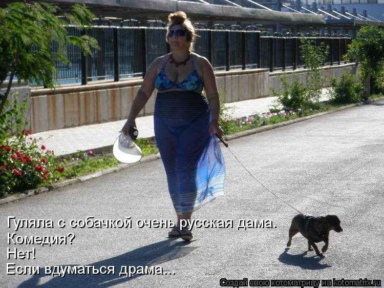 Котоматрица: Гуляла с собачкой очень русская дама. Комедия? Нет! Если вдуматься драма...