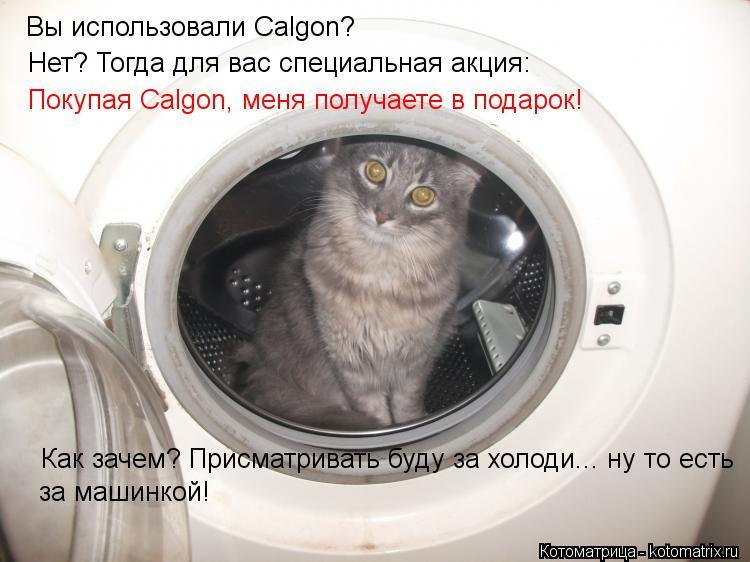 Котоматрица: Покупая Calgon, меня получаете в подарок! Как зачем? Присматривать буду за холоди... ну то есть за машинкой! Нет? Тогда для вас специальная акция:
